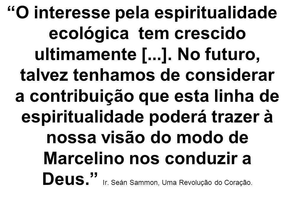 O interesse pela espiritualidade ecológica tem crescido ultimamente [...]. No futuro, talvez tenhamos de considerar a contribuição que esta linha de e