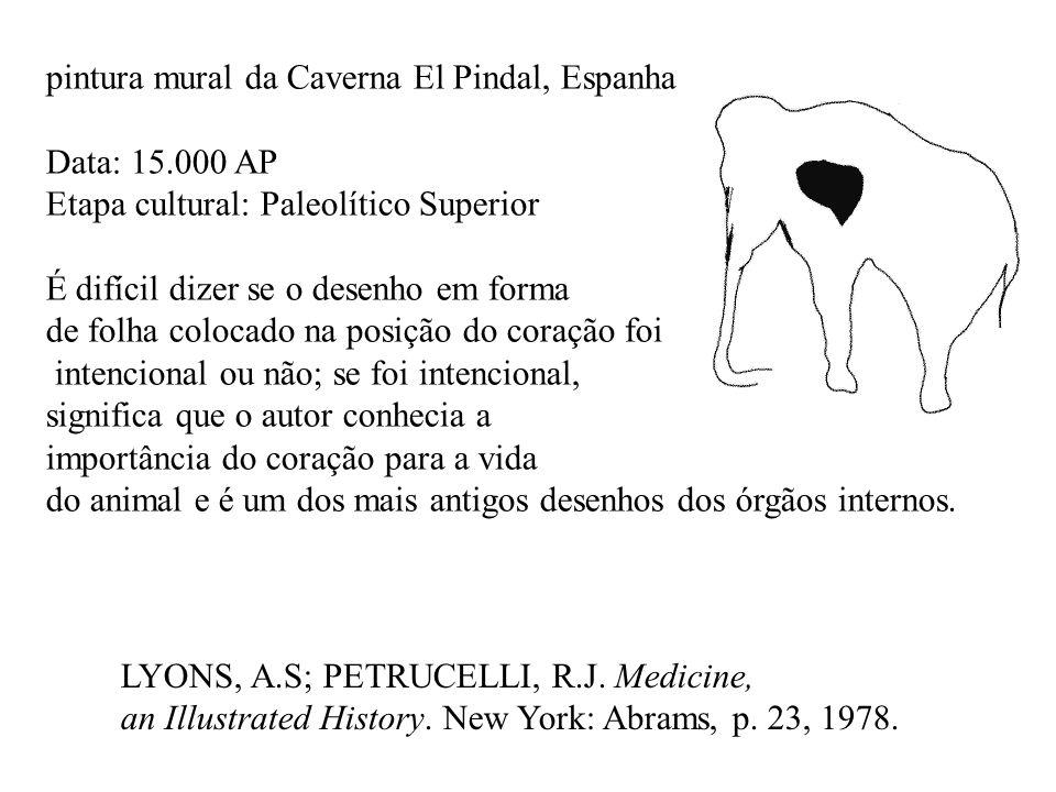 LYONS, A.S; PETRUCELLI, R.J. Medicine, an Illustrated History. New York: Abrams, p. 23, 1978. pintura mural da Caverna El Pindal, Espanha Data: 15.000