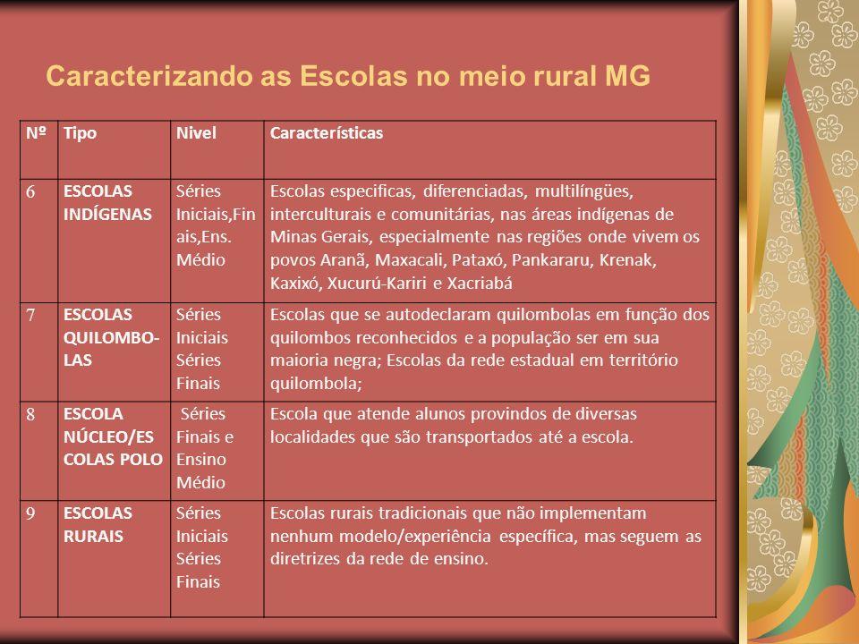 Caracterizando as Escolas no meio rural MG NºTipoNivelCaracterísticas 6 ESCOLAS INDÍGENAS Séries Iniciais,Fin ais,Ens. Médio Escolas especificas, dife