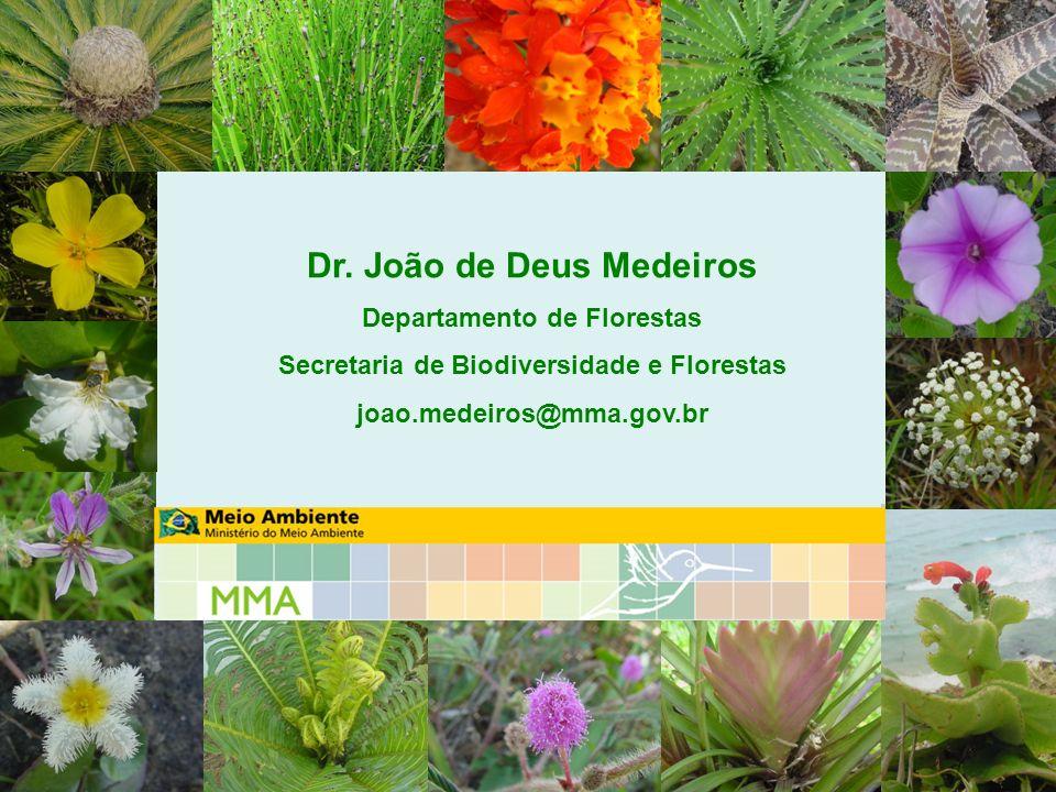 Dr. João de Deus Medeiros Departamento de Florestas Secretaria de Biodiversidade e Florestas joao.medeiros@mma.gov.br