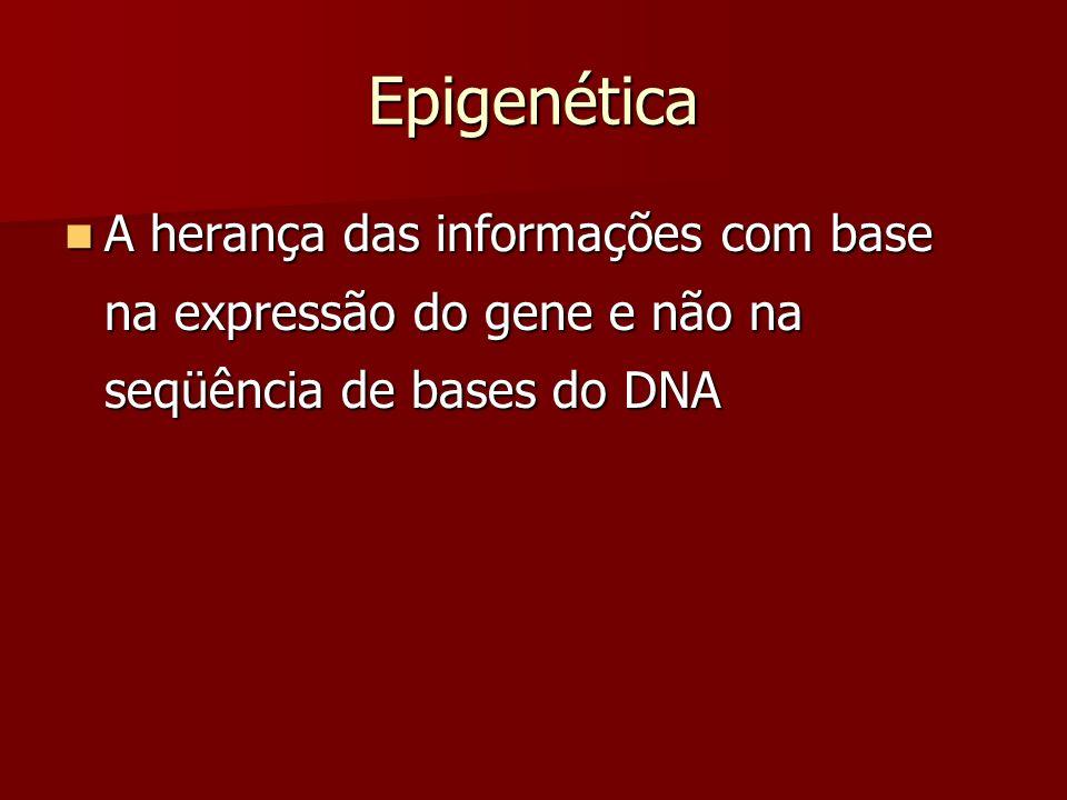 Epigenética A herança das informações com base na expressão do gene e não na seqüência de bases do DNA A herança das informações com base na expressão
