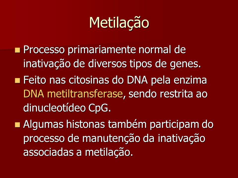 Metilação Processo primariamente normal de inativação de diversos tipos de genes. Processo primariamente normal de inativação de diversos tipos de gen