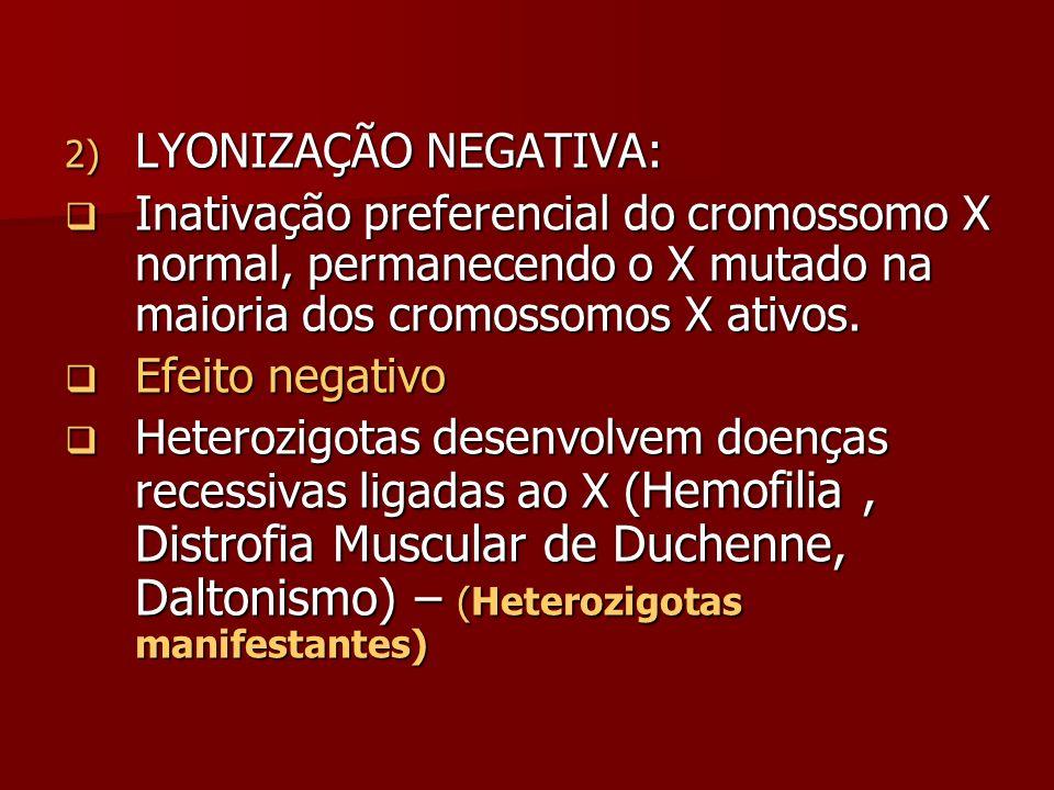 2) LYONIZAÇÃO NEGATIVA: Inativação preferencial do cromossomo X normal, permanecendo o X mutado na maioria dos cromossomos X ativos. Inativação prefer