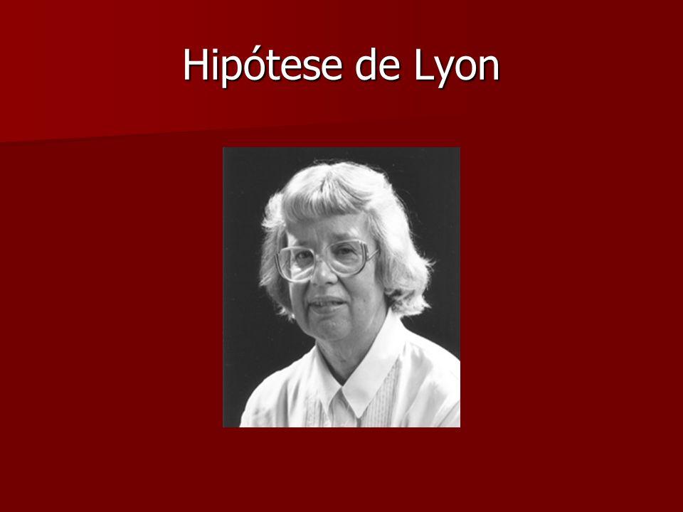Hipótese de Lyon