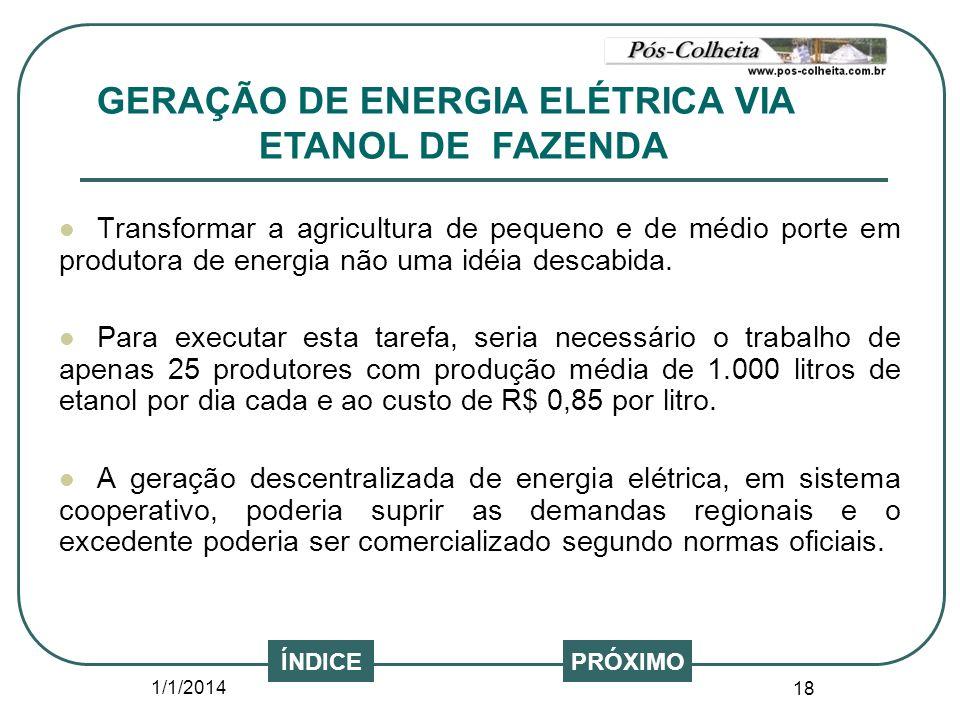 1/1/2014 18 Transformar a agricultura de pequeno e de médio porte em produtora de energia não uma idéia descabida. Para executar esta tarefa, seria ne