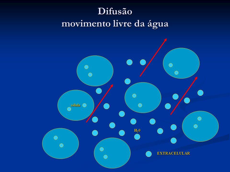 célula H20H20H20H20 EXTRACELULAR Difusão movimento livre da água