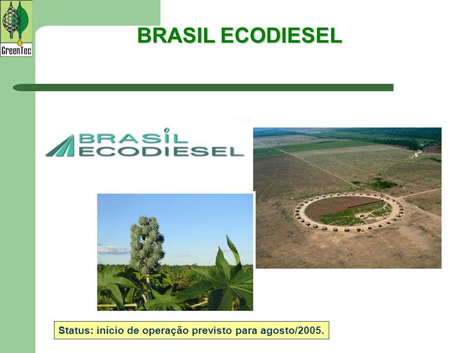 BRASIL ECODIESEL Status: início de operação previsto para agosto/2005.