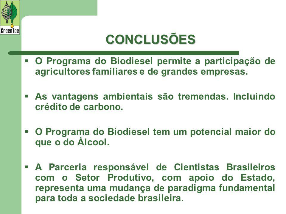 CONCLUSÕES O Programa do Biodiesel permite a participação de agricultores familiares e de grandes empresas. As vantagens ambientais são tremendas. Inc