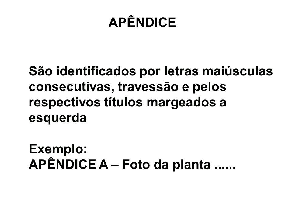 APÊNDICE São identificados por letras maiúsculas consecutivas, travessão e pelos respectivos títulos margeados a esquerda Exemplo: APÊNDICE A – Foto d