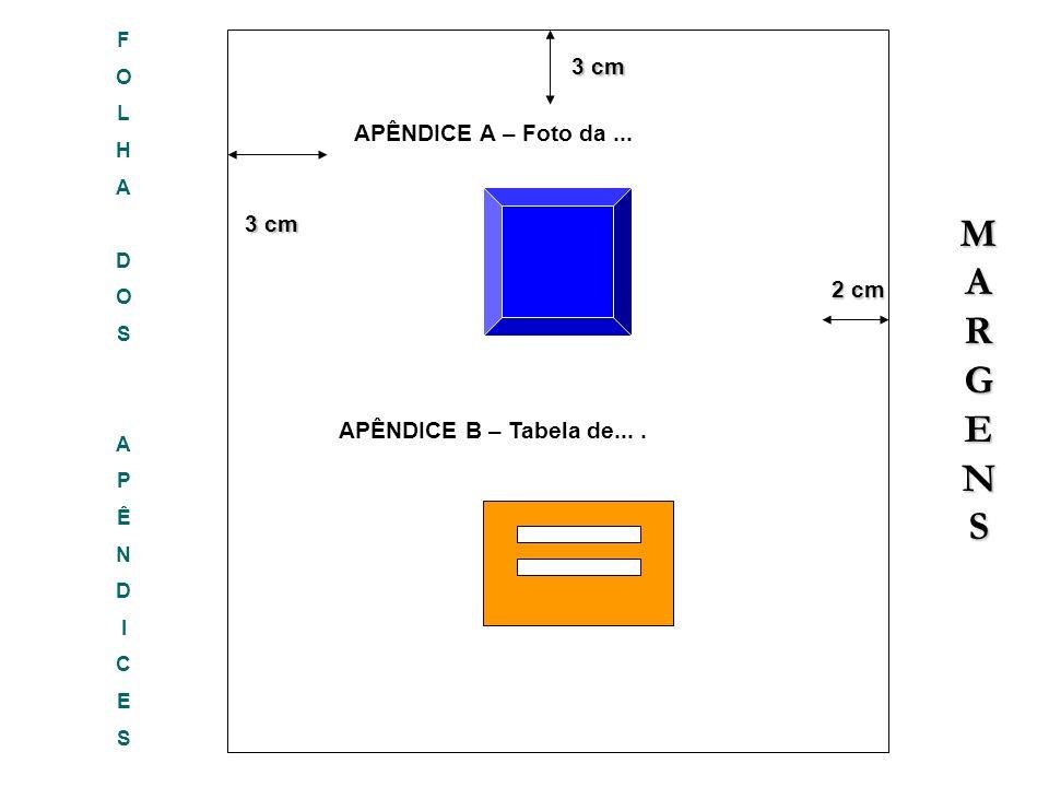 FOLHADOSAPÊNDICESFOLHADOSAPÊNDICES 3 cm 3 cm 2 cm 2 cm 3 cm APÊNDICE A – Foto da... MARGENSMARGENSMARGENSMARGENS APÊNDICE B – Tabela de....