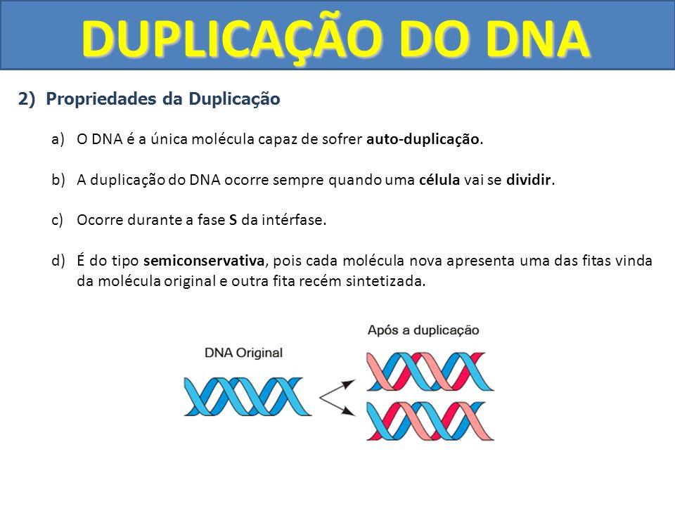 DUPLICAÇÃO DO DNA 2) Propriedades da Duplicação a)O DNA é a única molécula capaz de sofrer auto-duplicação. b)A duplicação do DNA ocorre sempre quando