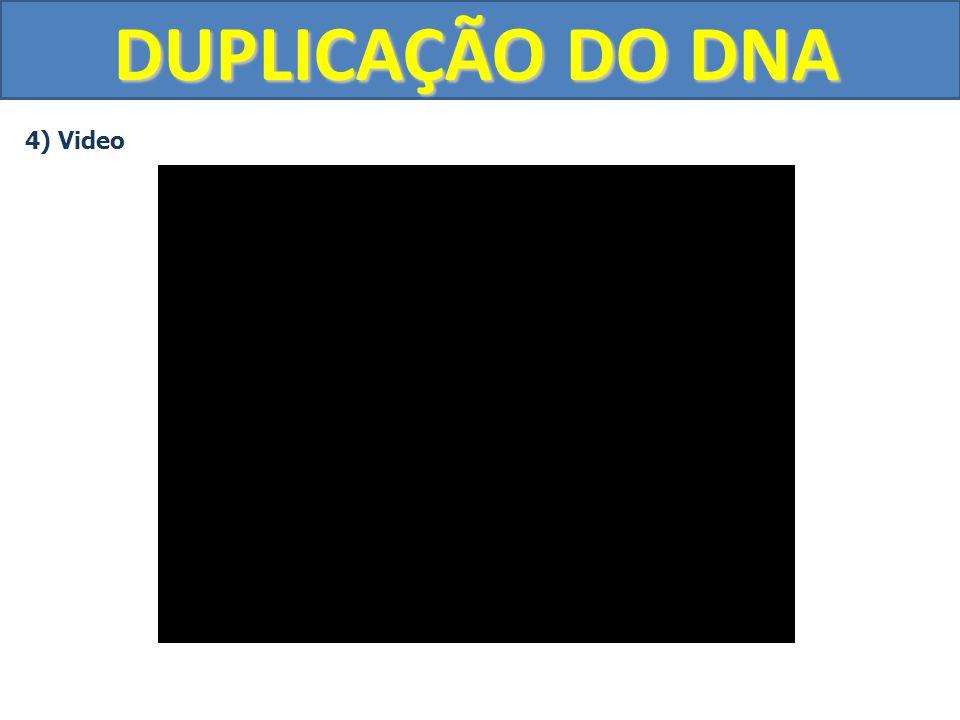 DUPLICAÇÃO DO DNA 4) Video