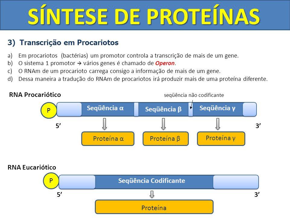 SÍNTESE DE PROTEÍNAS 3) Transcrição em Procariotos a)Em procariotos (bactérias) um promotor controla a transcrição de mais de um gene. b)O sistema 1 p