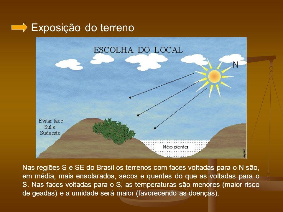 Exposição do terreno Nas regiões S e SE do Brasil os terrenos com faces voltadas para o N são, em média, mais ensolarados, secos e quentes do que as v