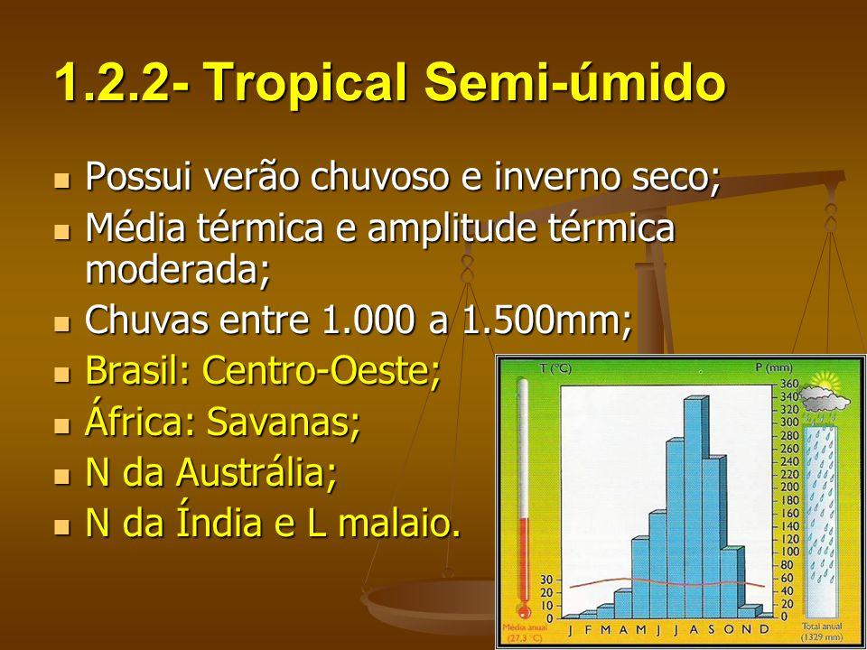 1.2.2- Tropical Semi-úmido Possui verão chuvoso e inverno seco; Possui verão chuvoso e inverno seco; Média térmica e amplitude térmica moderada; Média