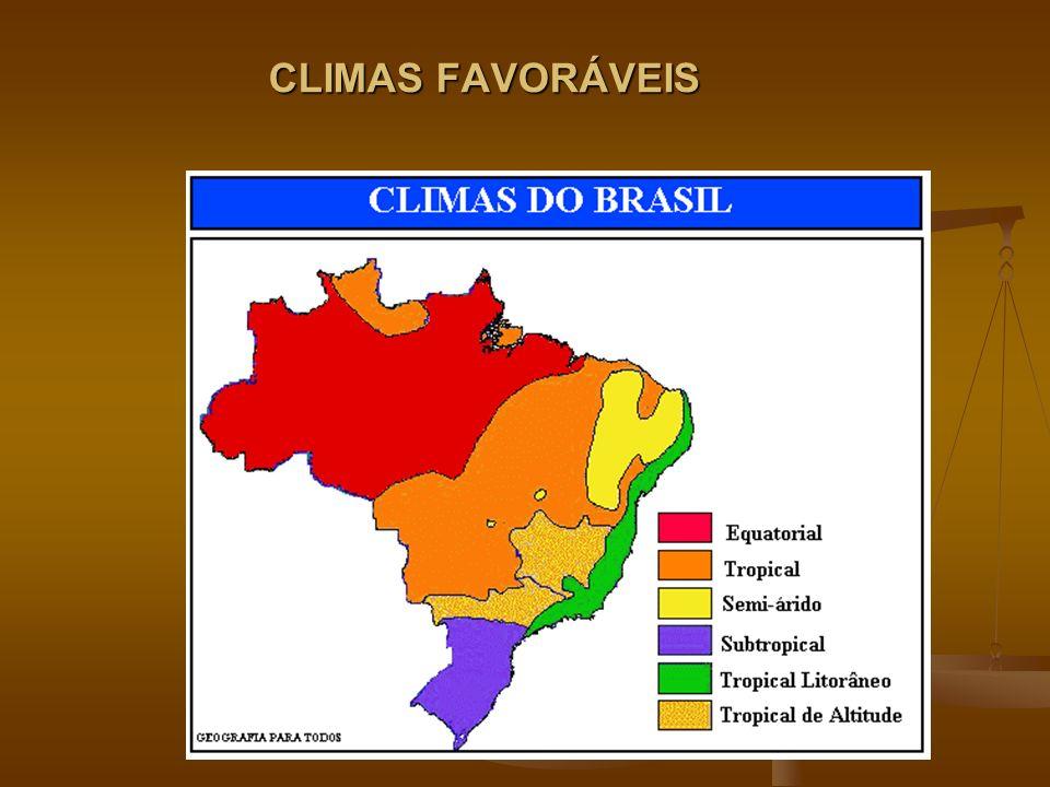 CLIMAS FAVORÁVEIS