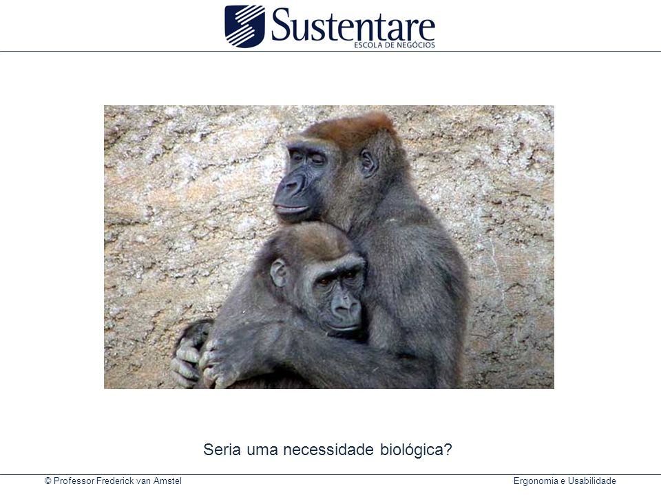 © Professor Frederick van Amstel Ergonomia e Usabilidade Seria uma necessidade biológica?
