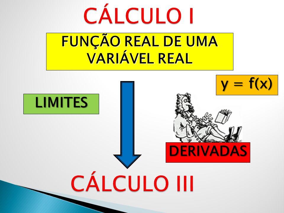 FUNÇÃO REAL DE UMA VARIÁVEL REAL LIMITES DERIVADAS y = f(x)