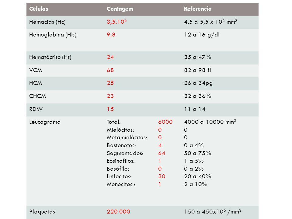 CélulasContagemReferencia Hemacias (Hc)3,5.10 6 4,5 a 5,5 x 10 6 mm 3 Hemoglobina (Hb)9,812 a 16 g/dl Hematócrito (Ht)2435 a 47% VCM6882 a 98 fl HCM25