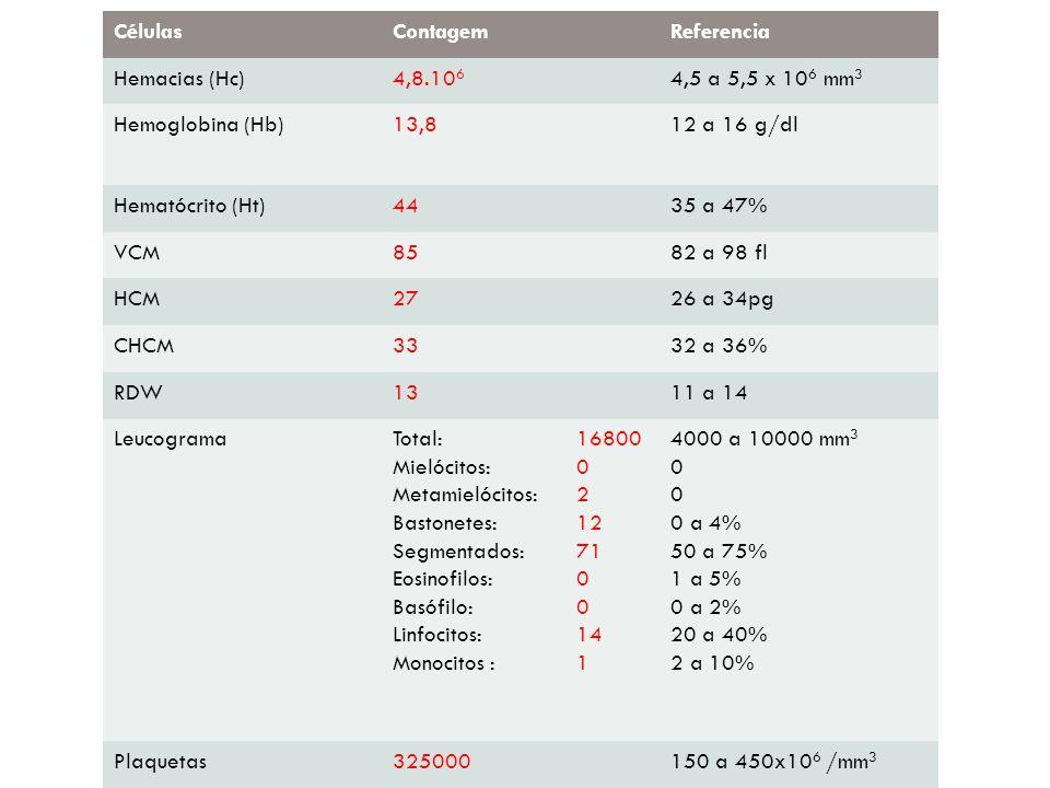 CélulasContagemReferencia Hemacias (Hc)4,8.10 6 4,5 a 5,5 x 10 6 mm 3 Hemoglobina (Hb)13,812 a 16 g/dl Hematócrito (Ht)4435 a 47% VCM8582 a 98 fl HCM2