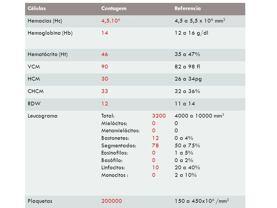 CélulasContagemReferencia Hemacias (Hc)4,5.10 6 4,5 a 5,5 x 10 6 mm 3 Hemoglobina (Hb)1412 a 16 g/dl Hematócrito (Ht)4635 a 47% VCM9082 a 98 fl HCM302