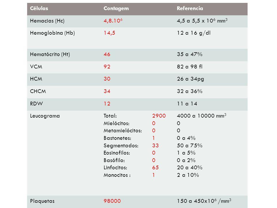 CélulasContagemReferencia Hemacias (Hc)4,8.10 6 4,5 a 5,5 x 10 6 mm 3 Hemoglobina (Hb)14,512 a 16 g/dl Hematócrito (Ht)4635 a 47% VCM9282 a 98 fl HCM3