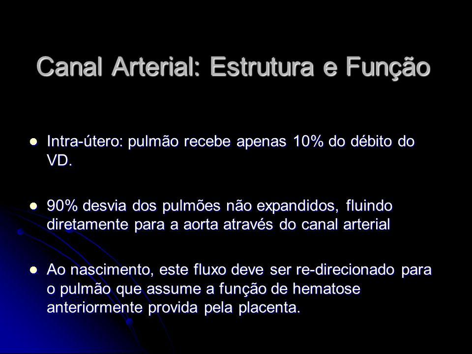 Canal Arterial: Estrutura e Função Intra-útero: pulmão recebe apenas 10% do débito do VD. Intra-útero: pulmão recebe apenas 10% do débito do VD. 90% d