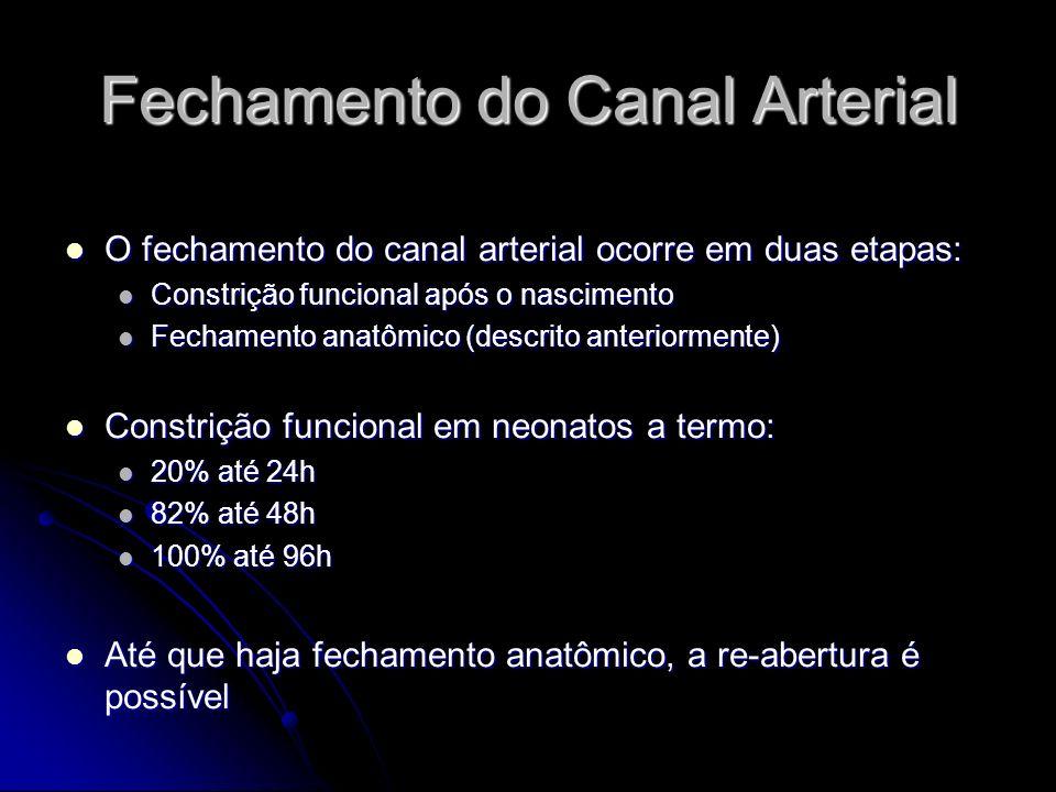 Fechamento do Canal Arterial O fechamento do canal arterial ocorre em duas etapas: O fechamento do canal arterial ocorre em duas etapas: Constrição fu