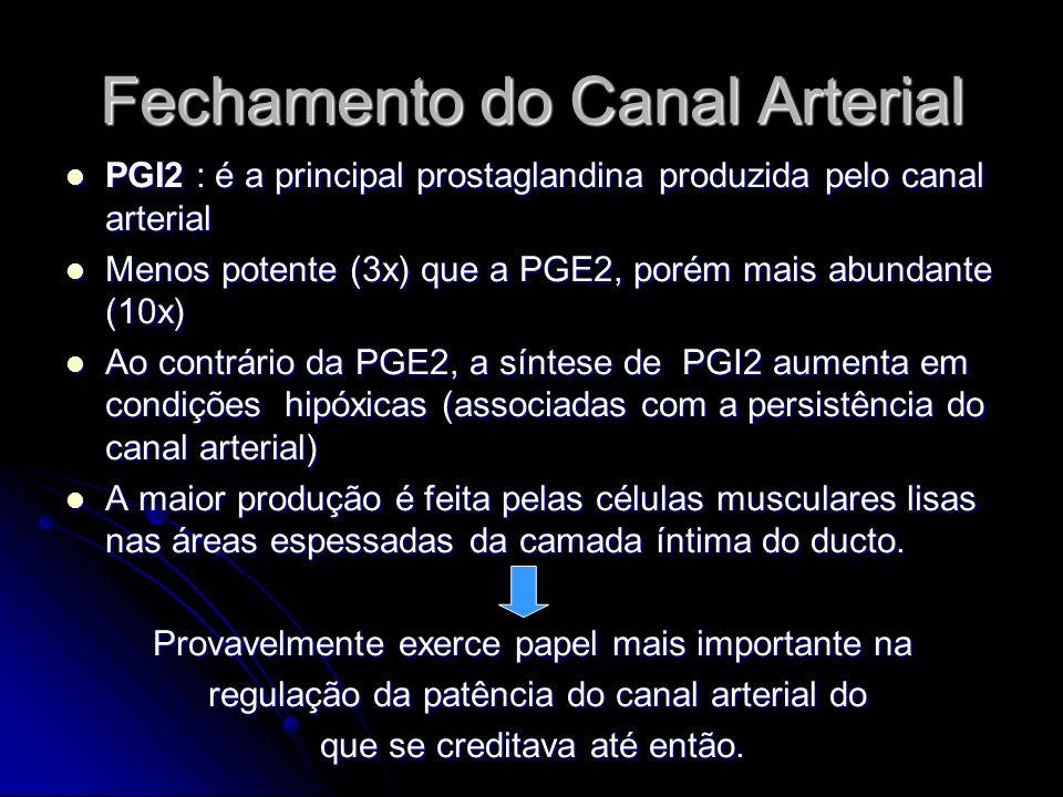 Fechamento do Canal Arterial PGI2 : é a principal prostaglandina produzida pelo canal arterial PGI2 : é a principal prostaglandina produzida pelo cana