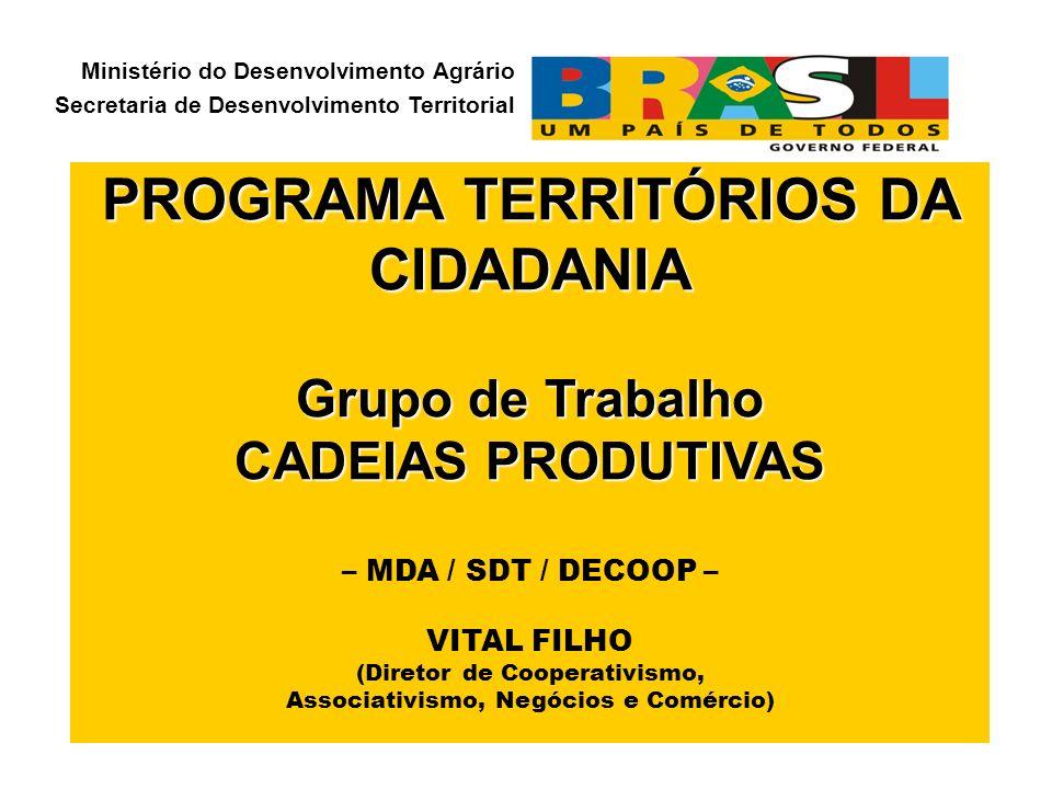 PROGRAMA TERRITÓRIOS DA CIDADANIA Grupo de Trabalho CADEIAS PRODUTIVAS CADEIAS PRODUTIVAS – MDA / SDT / DECOOP – VITAL FILHO (Diretor de Cooperativism