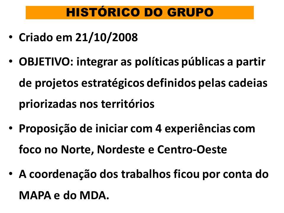 HISTÓRICO DO GRUPO Criado em 21/10/2008 OBJETIVO: integrar as políticas públicas a partir de projetos estratégicos definidos pelas cadeias priorizadas