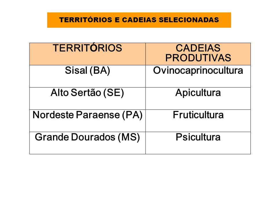 TERRITÓRIOS E CADEIAS SELECIONADAS TERRIT Ó RIOSCADEIAS PRODUTIVAS Sisal (BA)Ovinocaprinocultura Alto Sertão (SE)Apicultura Nordeste Paraense (PA)Frut