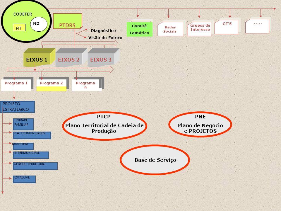 PROJETO ESTRATÉGICO Programa 2 Programa n Programa 1 ND CODETER NT PTDRS Visão de Futuro Diagnóstico EIXOS 1EIXOS 2EIXOS 3 UNIDADE FAMILIAR P.A. / COM