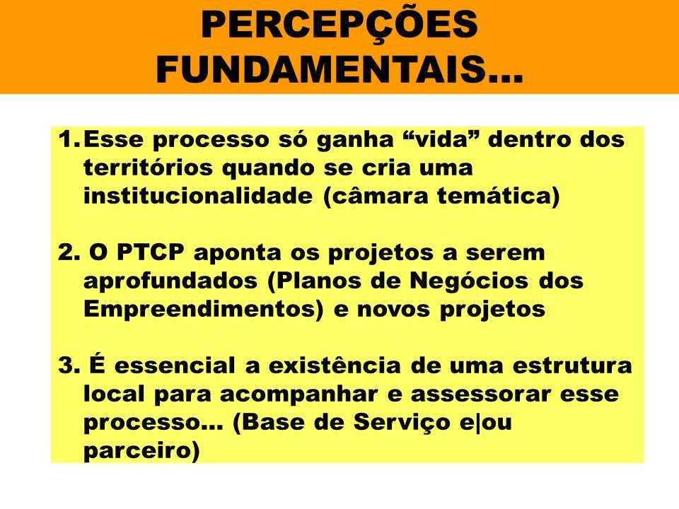 PERCEPÇÕES FUNDAMENTAIS… 1.Esse processo só ganha vida dentro dos territórios quando se cria uma institucionalidade (câmara temática) 2. O PTCP aponta