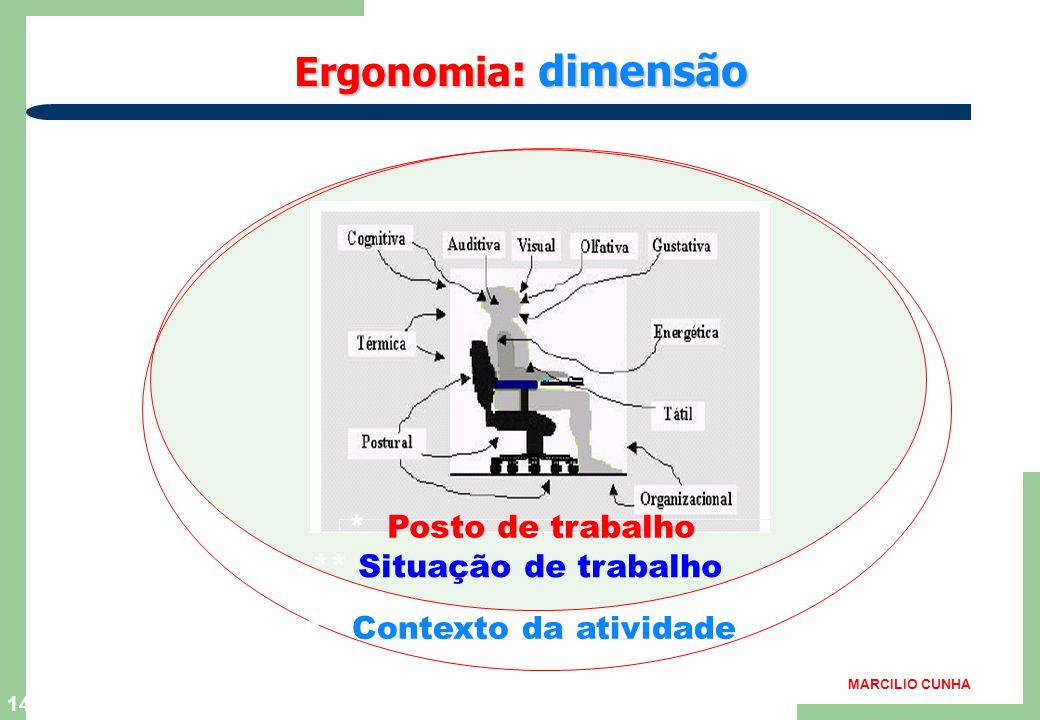 13 Formação da equipe de estudos Várias disciplinas científicas e tecnológicas, formam o arcaboço da ergonomia. As informações acumuladas nos campos a