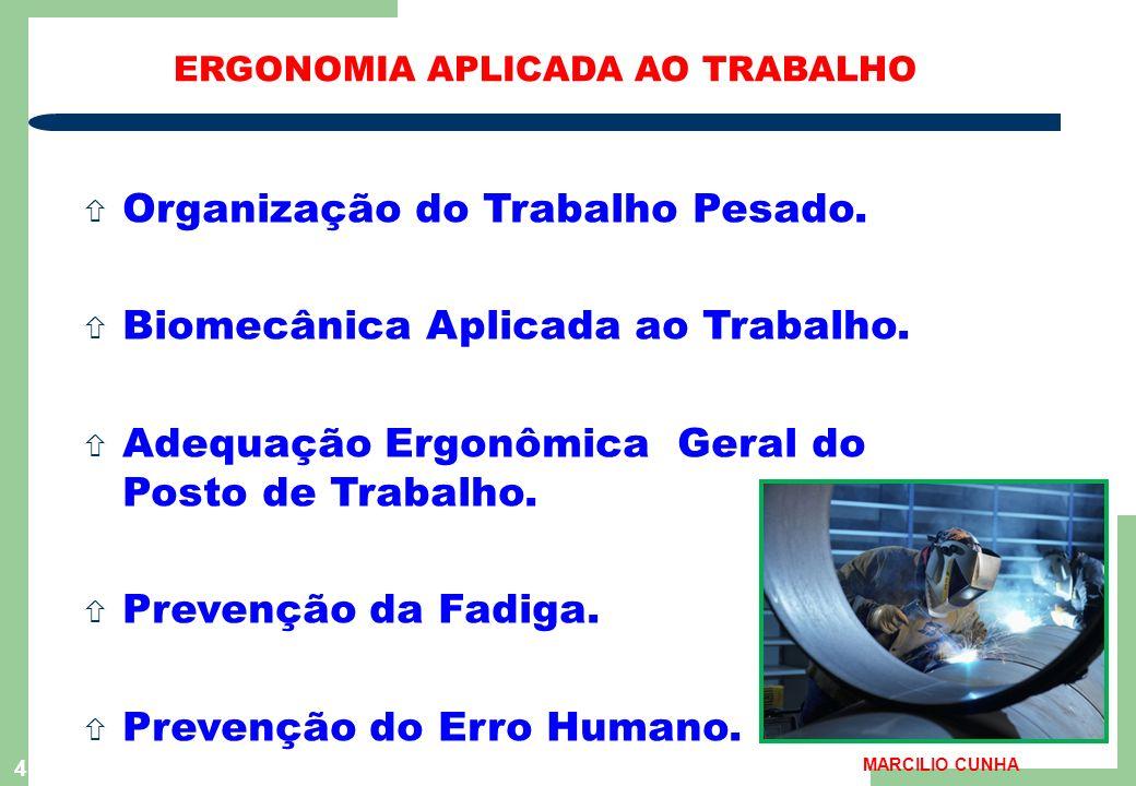 4 ERGONOMIA APLICADA AO TRABALHO ñ Organização do Trabalho Pesado.