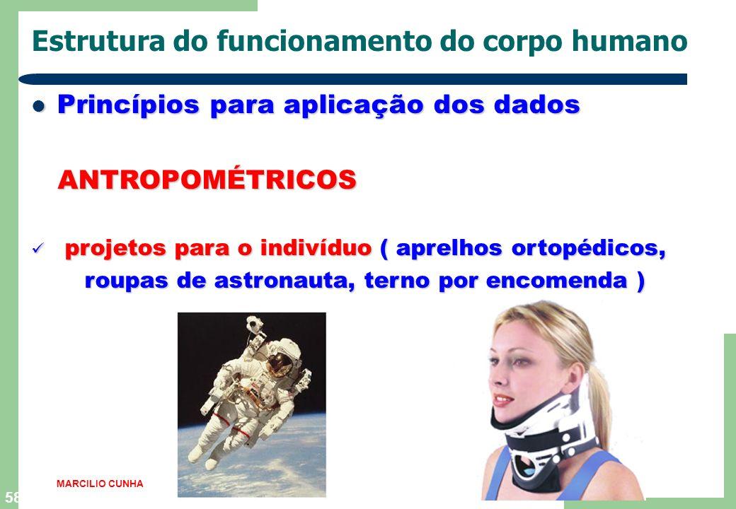 57 Estrutura do funcionamento do corpo humano Princípios para aplicação dos dados Princípios para aplicação dos dados ANTROPOMÉTRICOS ANTROPOMÉTRICOS