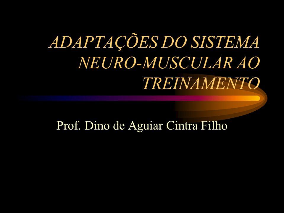 ADAPTAÇÕES DO SISTEMA NEURO-MUSCULAR AO TREINAMENTO Prof. Dino de Aguiar Cintra Filho