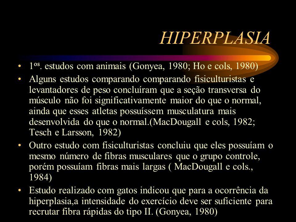 HIPERPLASIA 1 os. estudos com animais (Gonyea, 1980; Ho e cols, 1980) Alguns estudos comparando comparando fisiculturistas e levantadores de peso conc
