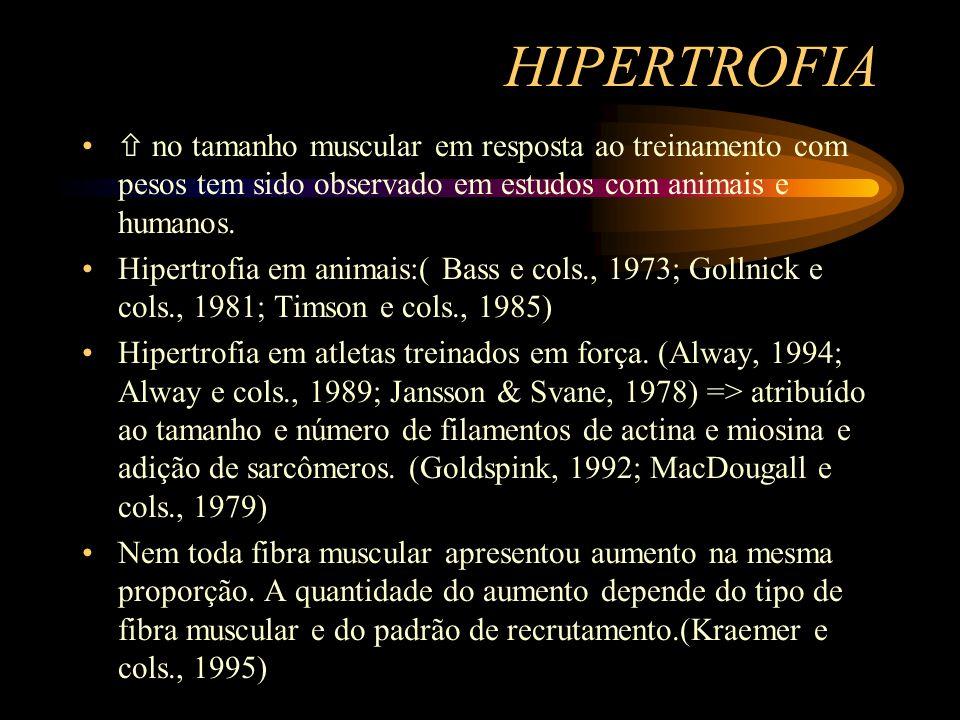 HIPERTROFIA no tamanho muscular em resposta ao treinamento com pesos tem sido observado em estudos com animais e humanos. Hipertrofia em animais:( Bas