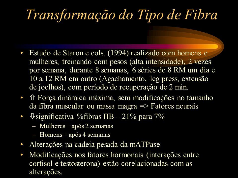 Transformação do Tipo de Fibra Estudo de Staron e cols. (1994) realizado com homens e mulheres, treinando com pesos (alta intensidade), 2 vezes por se