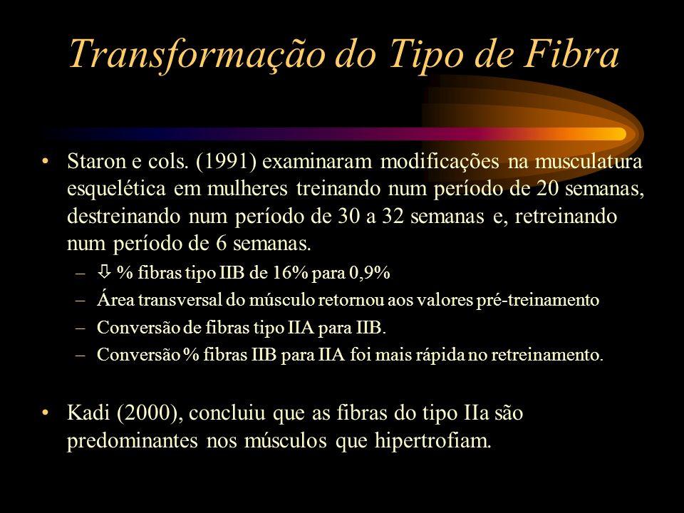 Transformação do Tipo de Fibra Staron e cols. (1991) examinaram modificações na musculatura esquelética em mulheres treinando num período de 20 semana