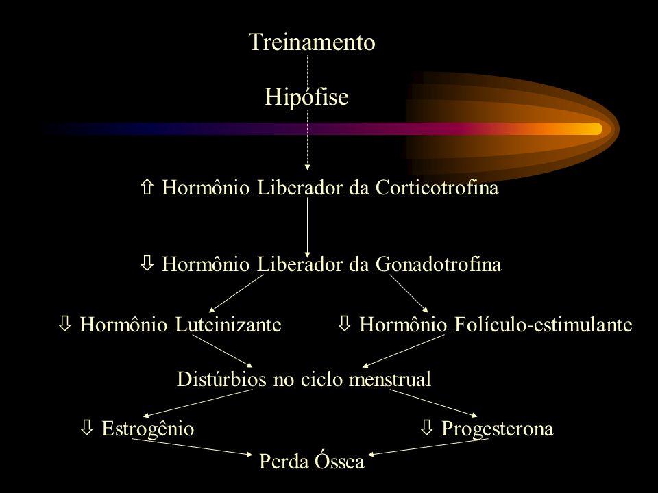 Treinamento Hipófise Hormônio Liberador da Corticotrofina Hormônio Liberador da Gonadotrofina Hormônio Luteinizante Hormônio Folículo-estimulante Dist