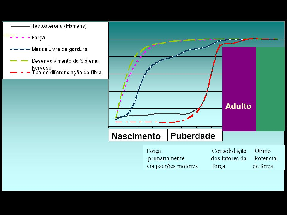 Nascimento Puberdade Adulto Força Consolidação Ótimo primariamente dos fatores da Potencial via padrões motores força de força etário.