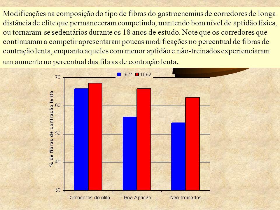 Modificações na composição do tipo de fibras do gastrocnemius de corredores de longa distância de elite que permaneceram competindo, mantendo bom níve