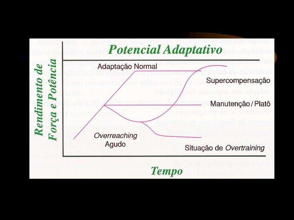 Efeitos do Treinamento Alterações na composição corporal e no tipo de fibra muscular devidas ao treinamento de força ocorrem da mesma maneira em ambos os gêneros.