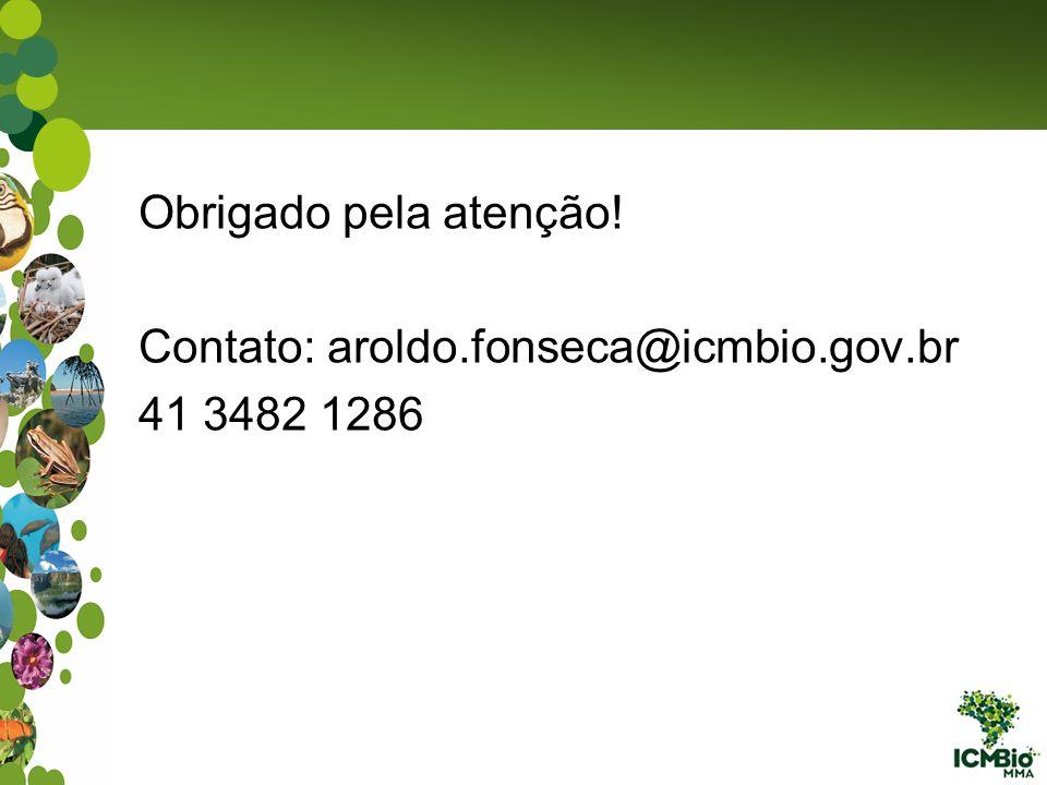 Obrigado pela atenção! Contato: aroldo.fonseca@icmbio.gov.br 41 3482 1286