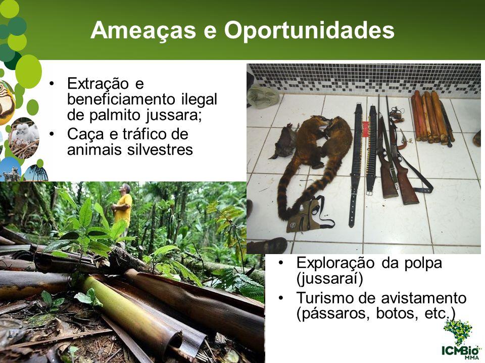Extração e beneficiamento ilegal de palmito jussara; Caça e tráfico de animais silvestres Ameaças e Oportunidades Exploração da polpa (jussaraí) Turis