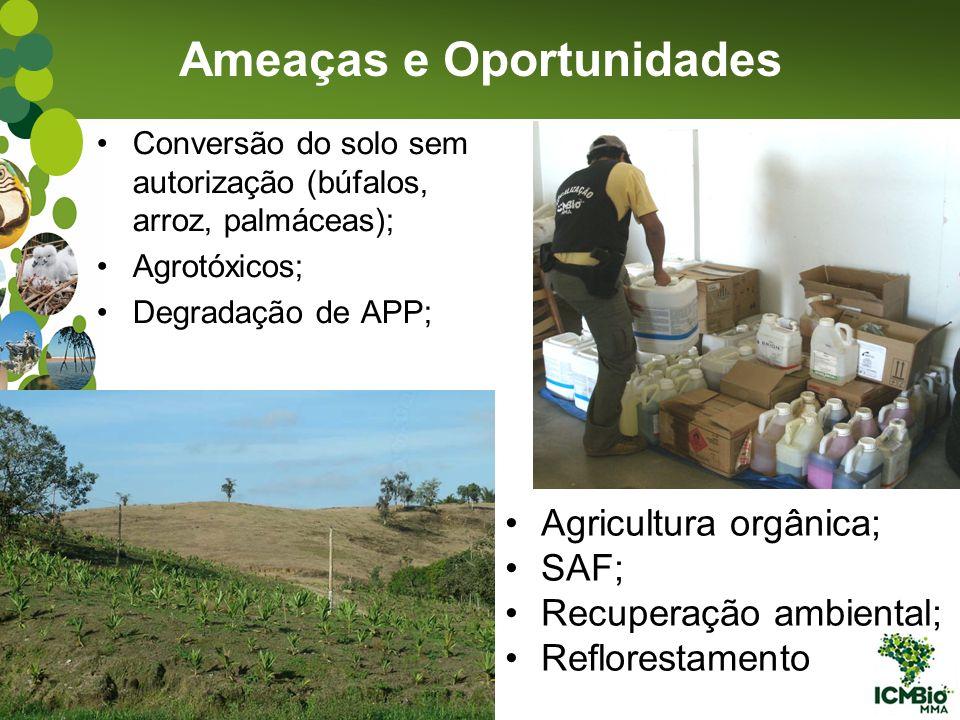 Conversão do solo sem autorização (búfalos, arroz, palmáceas); Agrotóxicos; Degradação de APP; Ameaças e Oportunidades Agricultura orgânica; SAF; Recu