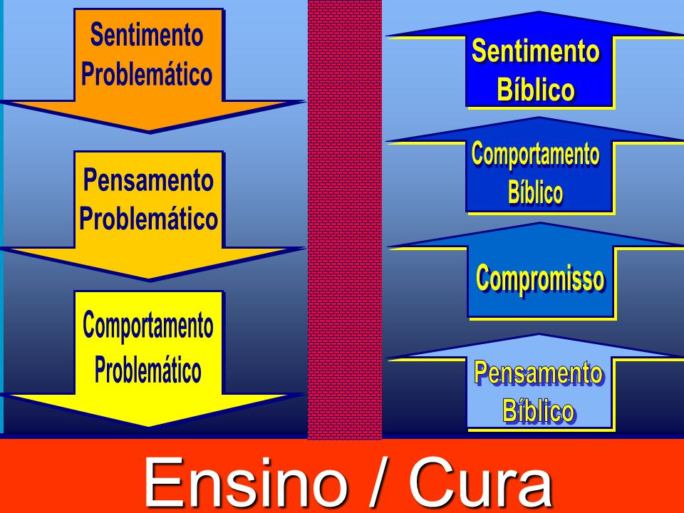 Ensino / Cura